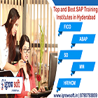Top and Best SAP Training Institute in Hyderabad